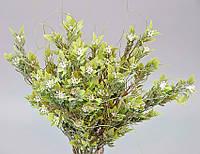 Цветы декоративные - 209165