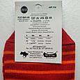 Носки женские Житомир 🐼 в красную полоску размер 35-40, фото 3