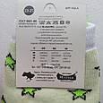 Носки женские салатовые с принтом собачки размер 36-40, фото 4