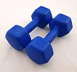 Гантели для фитнеса пластиковые цельные (неразборные) OSPORT Profi 2 кг (MS 2938), фото 3