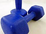 Гантели для фитнеса пластиковые цельные (неразборные) OSPORT Profi 2 кг (MS 2938), фото 2