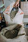 Кофе свежеобжаренный в зернах арабика Сальвадор Ла Махада, фото 5