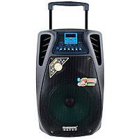 Портативная акустическая система с усилителем Temeisheng SL 12-02 с двумя микрофонами (S07177)