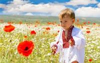 Вітаємо Вас із 24 річницею Незалежності України!