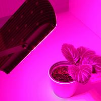 Герметичный фитосветильник Bioledex LED GoLeaf ASTIR 25Вт 80° красно-синего спектра IP65