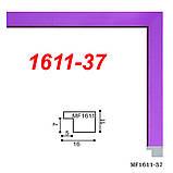 Рамка 25х38 багет 1611 колор, фото 4