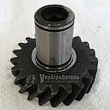 Шестерня привода НШ-10 МТЗ (Z=21, 6 шлицов) 240-1022061, фото 2