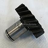 Шестерня привода НШ-10 МТЗ (Z=21, 6 шлицов) 240-1022061, фото 3