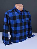 Мужские кашемировые рубашки  G-port  синяя в крупную клетку