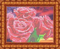 Схема для вышивания  на габардине Розы