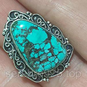 Кольцо с натуральным камнем бирюза   в серебре 16,25 р., фото 2