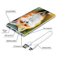 Универсальная мобильная батарея Лиса, 7500 мАч (E189-20)