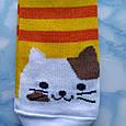 Носки женские котики жёлтая полоска  размер 36-41, фото 2