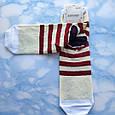 Носки женские котики вишнёвая полоска  размер 36-41, фото 2