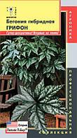 Бегония гибридная ГРИФОН, 3 мультидраже, в комнате и в саду,очень декоративна,тень,стрессоустойчива.