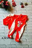 Набор кофточка с ползунком для девочек махра, фото 2