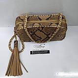 Женская бежевая сумочка STELLA на цепочке из питона, фото 3