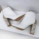 Белые ботильоны из питона с деталями другой расцветки на устойчивом каблуке, фото 3