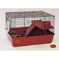 Клетка R2F. 69*45*43. Грызуны, фретки, кролики, шиншиллы, морские свинки и для других экзотических животных.