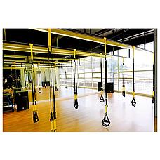Тренировочные петли TRX - FitStudio Suspension, петли для тренировки, фото 2