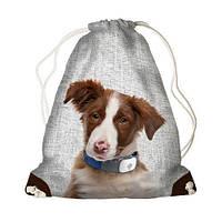 Детский рюкзак-мешок для игрушек,обуви  MINI Собака