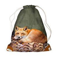 Детский рюкзак-мешок для игрушек,обуви Рыжая лиса