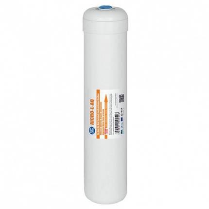 Картридж угольный Aquafilter AICRO-L-AQ, фото 2