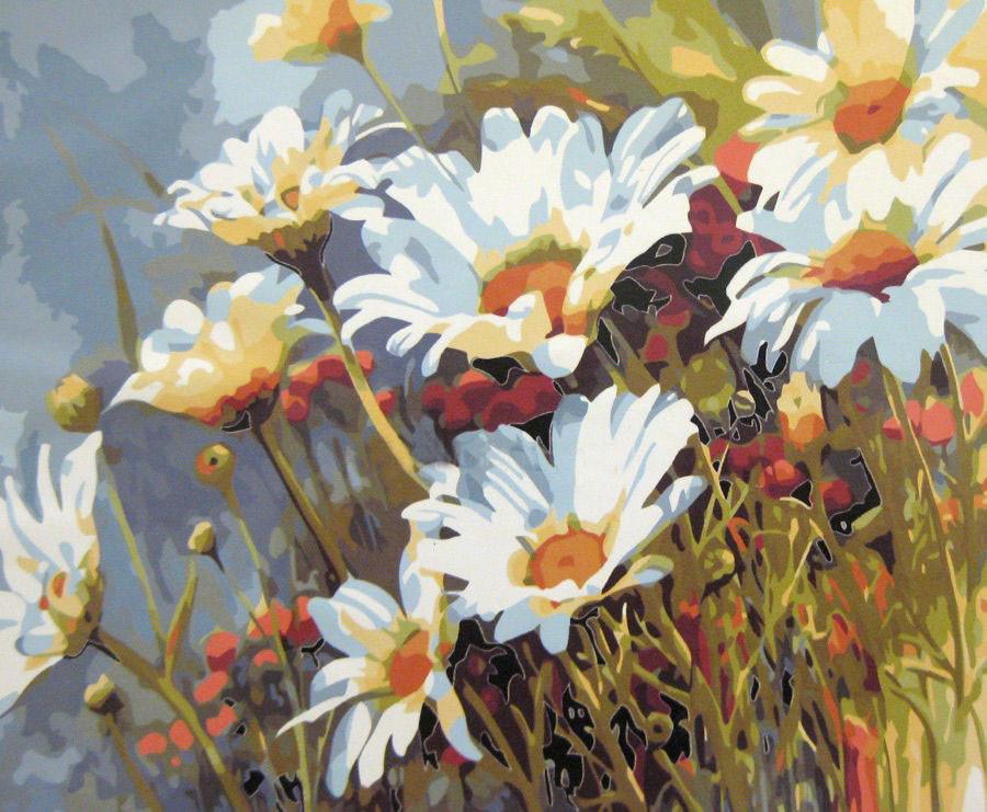 Картина раскраска по номерам Цветы Ромашковое поле 40х50см Mariposa Turbo