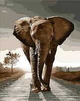 Картина по номерам Королевский слон 40х50см Mariposa Turbo