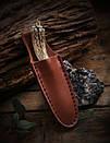 Нож коллекционный Дамаск DM-01, фото 2