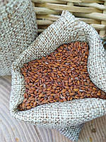 Семена кресс-салата 100г на микрозелень