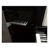 Винный шкаф EuroCave S-Pure-L Сплошная дверь Black Piano, цвет - черный, максимальная комплектация, фото 3