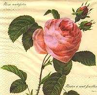 Декупажная салфетка Чудная роза 4902