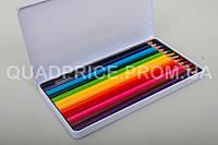 Цветные карандаши Acmeliae, 12 шт, 3 мм, шестигранные в метал. пенале, 9800-12