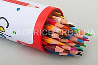 Цветные карандаши Acmeliae, 36 шт, 3 мм, шестигранные в метал. пенале, 9801-36, Gold/silver