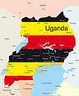 Кофе свежеобжаренный в зернах робуста Уганда, фото 3