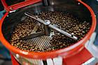 Кофе свежеобжаренный в зернах робуста Уганда, фото 5