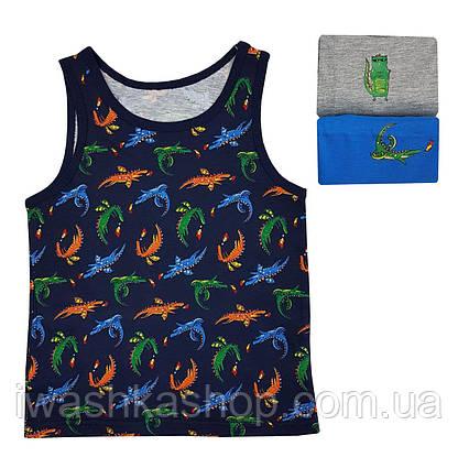 Комплект разноцветных маек с драконами на мальчика 5 - 6 лет, р. 116, Primark