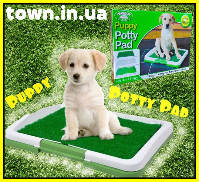 Туалет-лоток для собак и кошек Puppy Potty Pad, фото 1