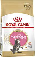 Роял Канин Мейн Кун Котята 10 кг- для котят от 2 до 15 месяцев