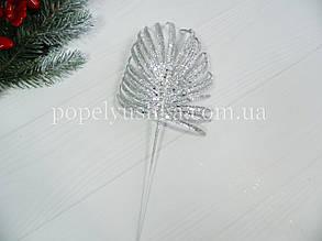 Гілка пальми срібна