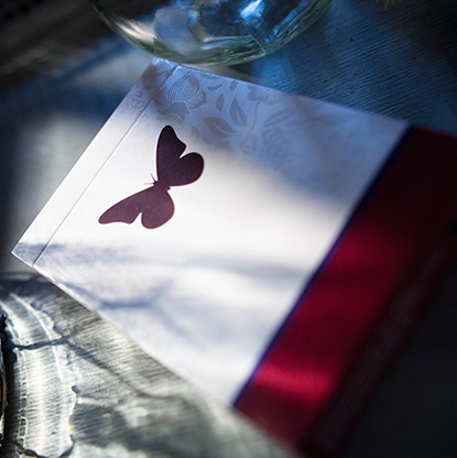 Карты игральные | Butterfly Playing Cards Marked (Red) 2nd Edition