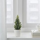 ИКЕА ВИНТЕРФЕСТ Искусственное растение и кашпо, рождественская елка, 6 см, фото 2