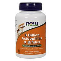 Пробиотическая добавка NOW 8 Billion Acidophilus & Bifidus (120 капс) нов 8 билион ацидопилус бифидус