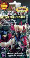 Каприфоль (Жимолость) Ароматная Лиана, семена, фото 1