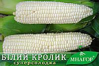 Цукрова кукурудза Білий Кролик F1, Sh2, молочно-біле зерно., фото 1