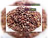 MultiChem. Фарба для насіння коричнева, REDCORN, 1 л. Краска для инкрустации семян, краска для семян.