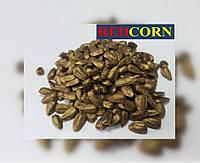 MultiChem. Фарба для насіння золота, REDCORN, 1 л. Краска для инкрустации семян, краска для семян.