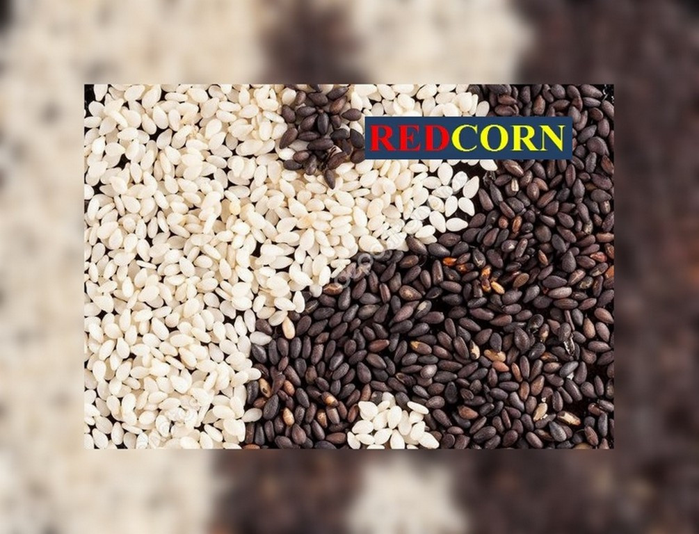 MultiChem. Фарба для насіння біла, REDCORN, 1 л. Краска для инкрустации семян, краска для семян., фото 1