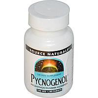 Пикногенол, Source Naturals, 100 мг, 60 таблеток